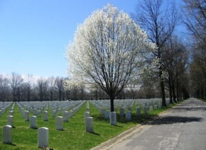 beverly-national-cemetery